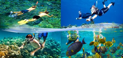 snorkeling-zadna